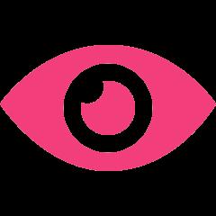ic-vision